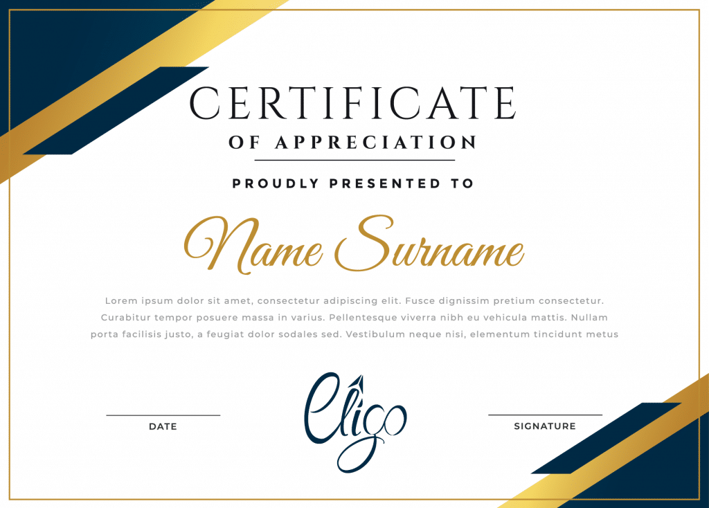 INDUSTRY RECOGNIZED CERTIFICATE